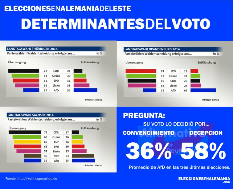 determinante voto afd europa euroesceptico alemania