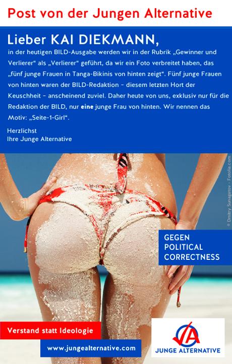 AfD politicamente incorrecto political correctness euroescepticos