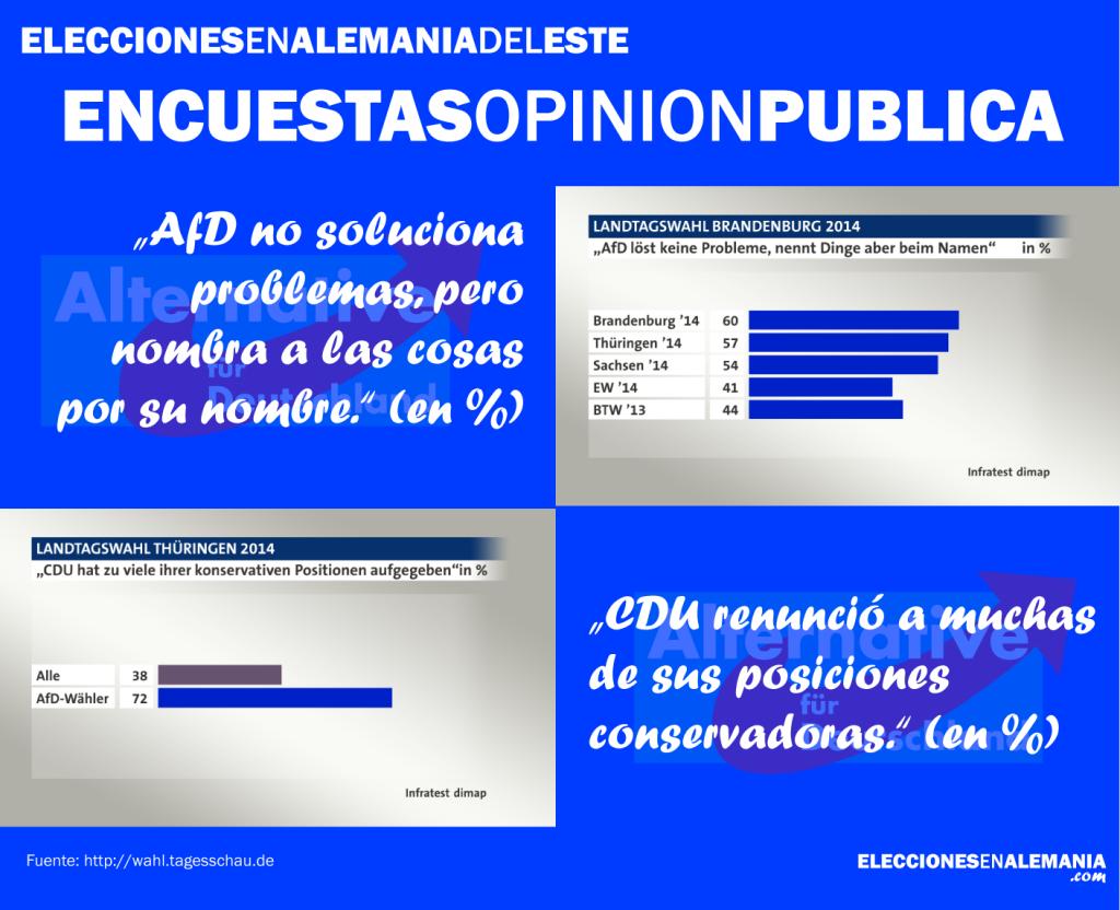 Afd encuestas opinion